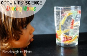 Super-cool-kids-science.-Make-worms-dance-1024x672